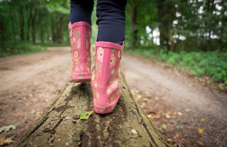promenade en forêt